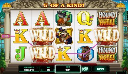 Hound Hotel Great Slots
